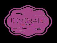 anunciante lomadee - Divinalu